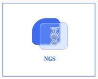 small RNA測序
